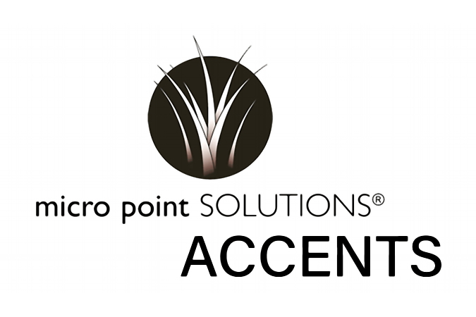 Micro Point Solutions ACCENTS Logo