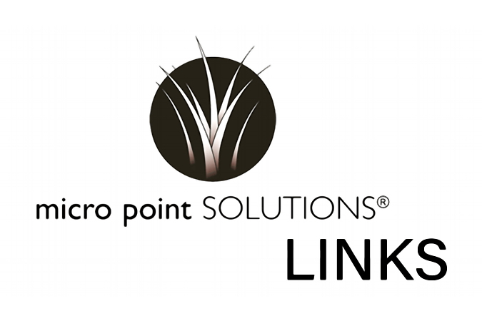 Micro Point Solutions LINKS Logo